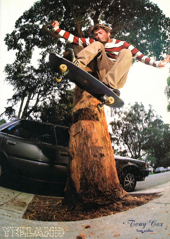 "Tony pays homage to Julien Stranger's ""Trollie"" aka the tree wallie. From our Feb. 1997 issue. Photo: Yelland."