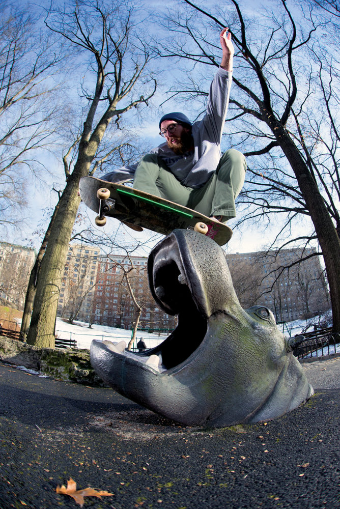 alex-fogt-hippo-wallie